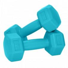 Гантели для фитнеса SportVida 2 x 1 кг SV-HK0217